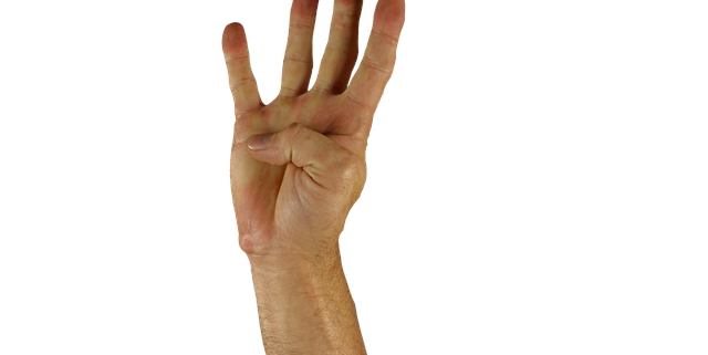 neljä sormea