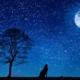 yhteistyön puute ja iso paha susi ulvomassa kuutamolla